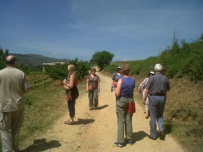 Walking part of the Camino